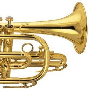 Продам муз трубу